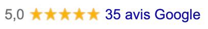 Avis Google Gestion Parasitaire